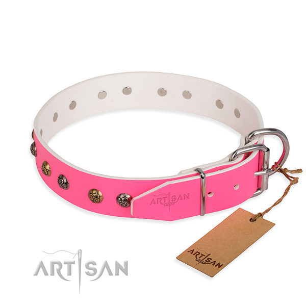 Genuine leather dog collar with awesome rust resistant adornments