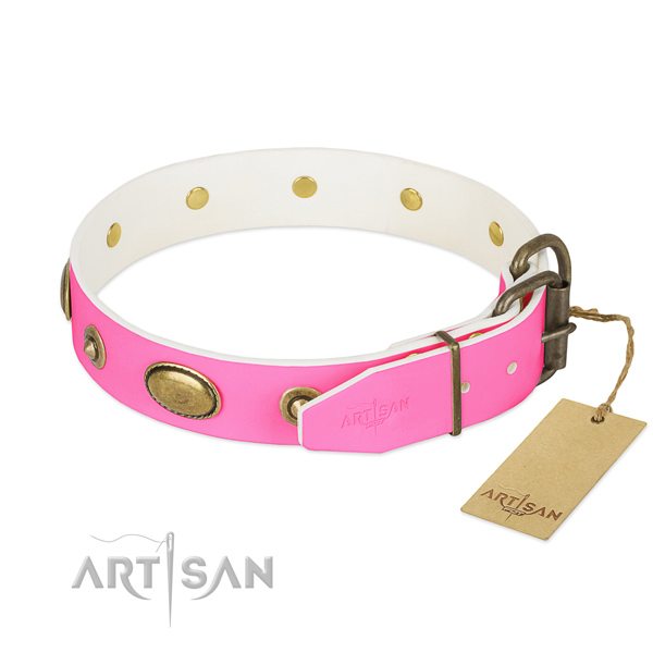Strong fittings on full grain leather dog collar for your pet