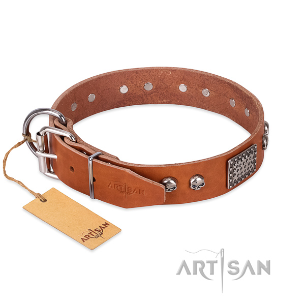 Reliable adornments on comfortable wearing dog collar