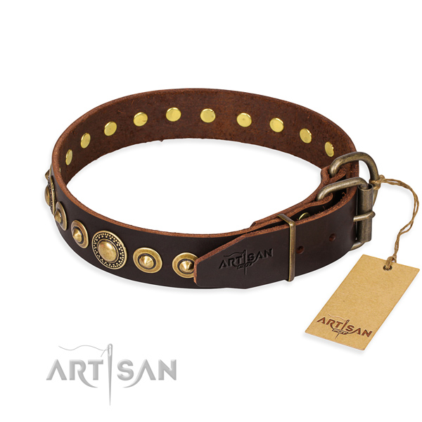 Strong genuine leather dog collar made for basic training