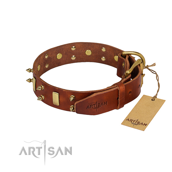 Everyday walking decorated dog collar of best quality leather