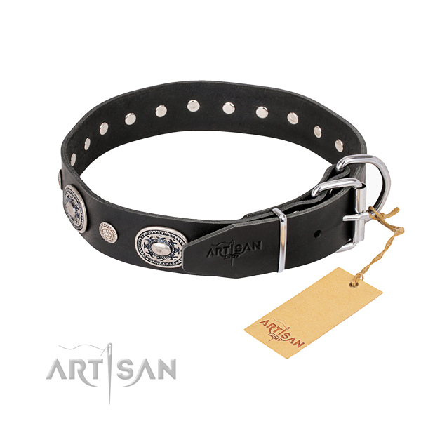 Best quality leather dog collar crafted for everyday walking