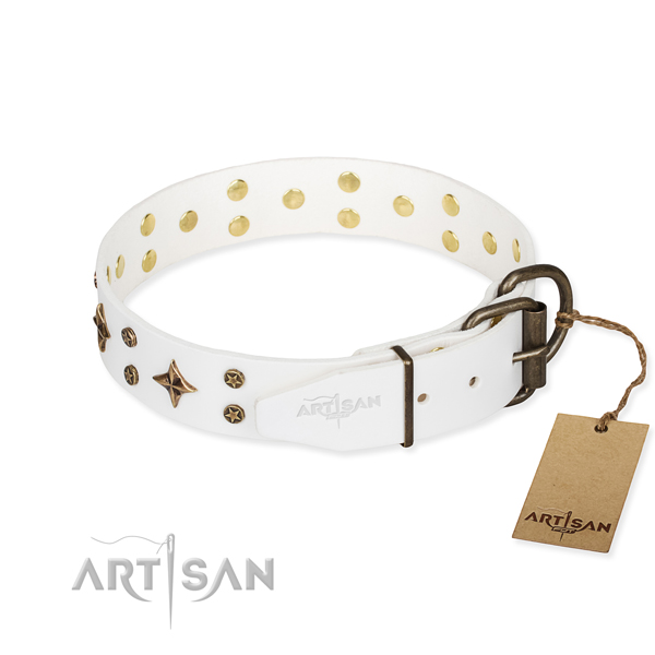 Fancy walking decorated dog collar of quality leather