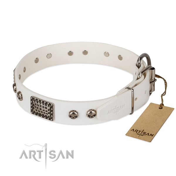 Rust resistant fittings on comfortable wearing dog collar