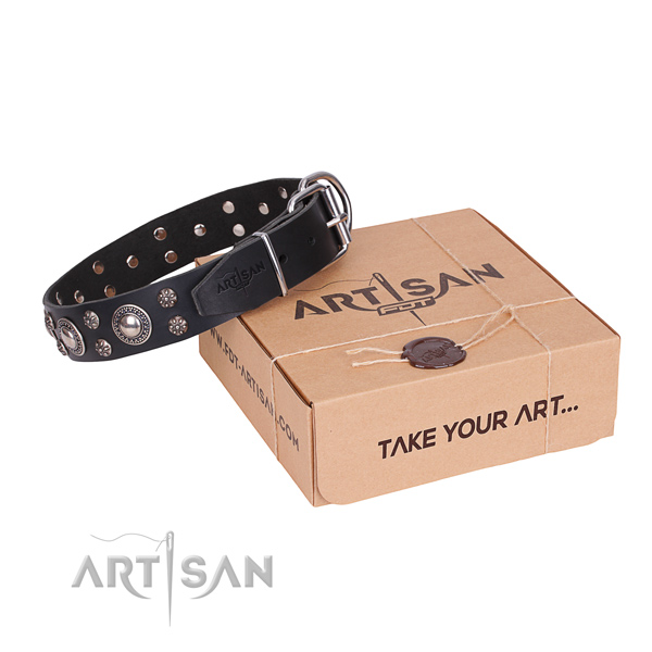 Comfortable wearing dog collar of finest quality natural leather with studs