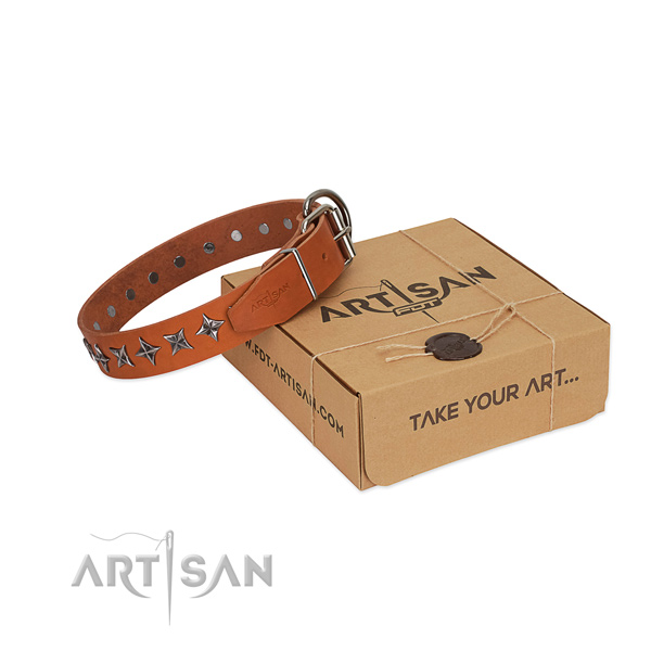 Comfy wearing dog collar of finest quality full grain genuine leather with decorations