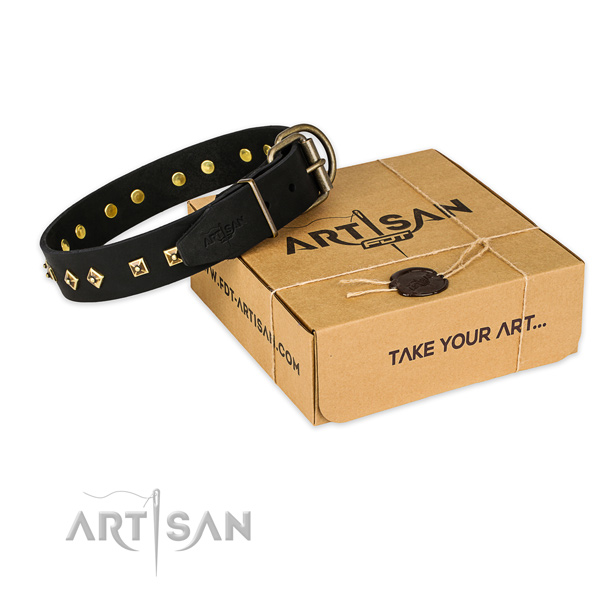 Corrosion proof traditional buckle on leather collar for your stylish dog