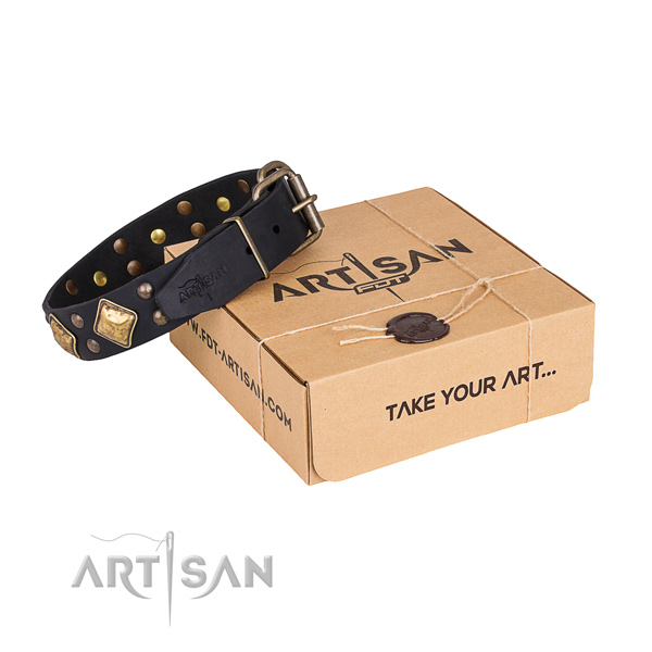 Walking dog collar with Exquisite strong embellishments