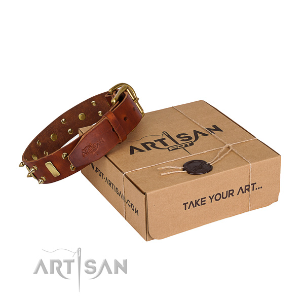 Daily use dog collar of fine quality full grain genuine leather with studs