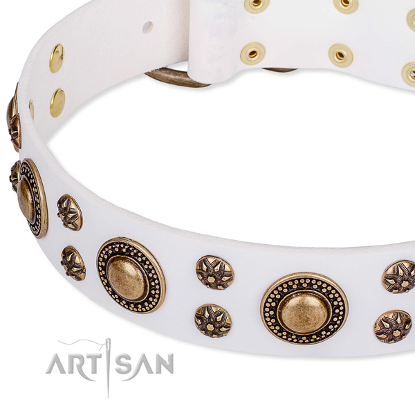 Comfortable wearing embellished dog collar of top notch leather