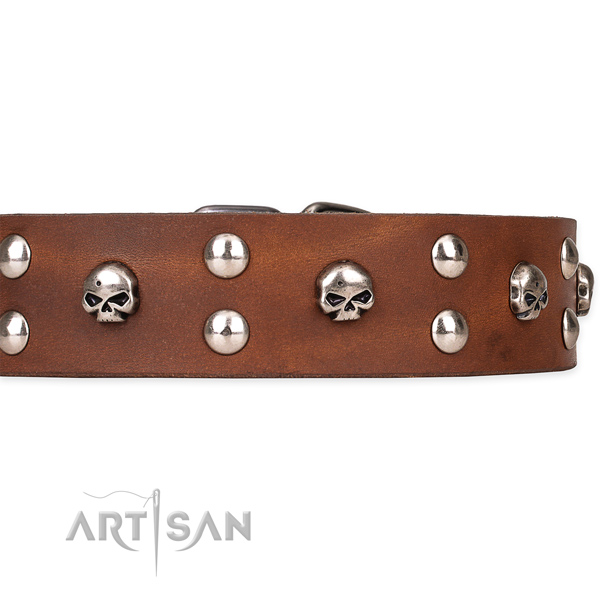 Stylish walking embellished dog collar of finest quality genuine leather