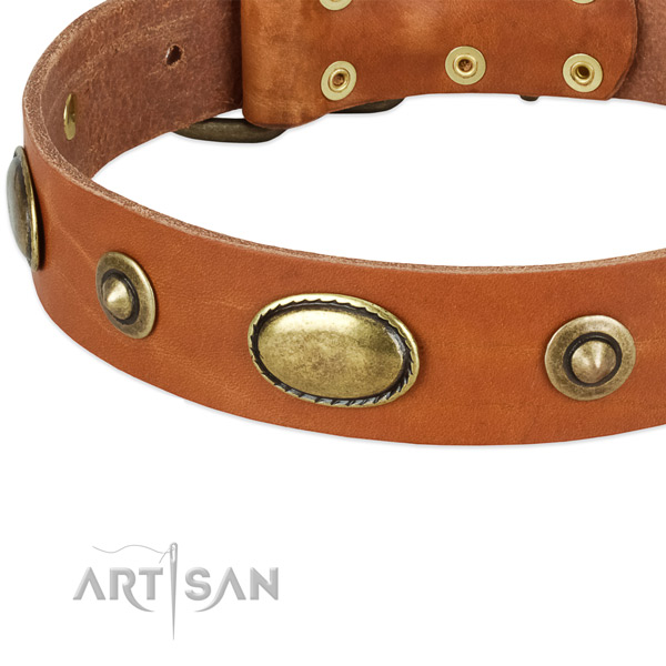 Durable buckle on natural leather dog collar for your pet
