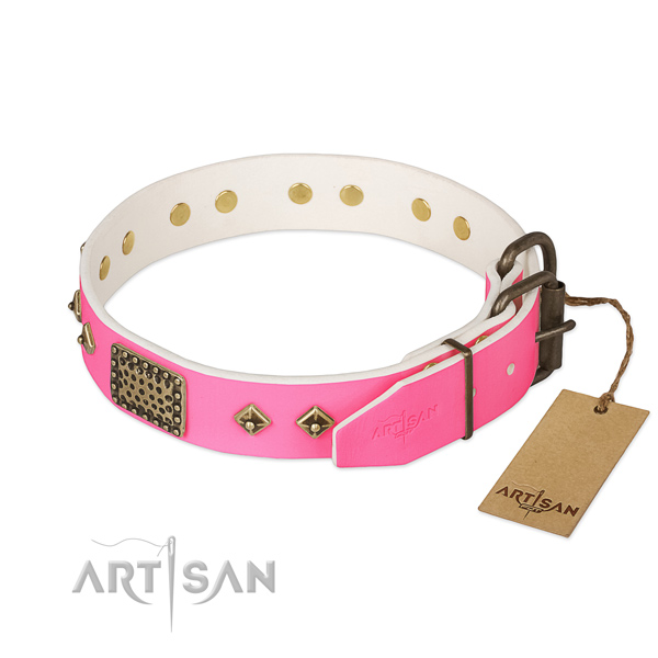Durable fittings on walking dog collar