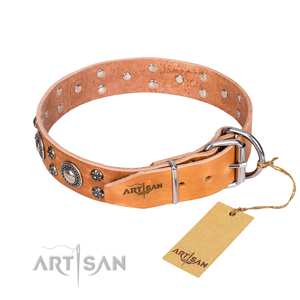 Everyday use decorated dog collar of best quality leather