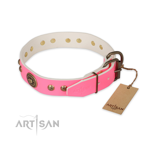 Strong D-ring on full grain genuine leather collar for everyday walking your four-legged friend