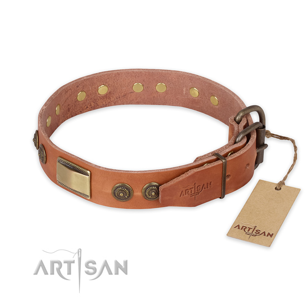 Strong buckle on full grain genuine leather collar for stylish walking your four-legged friend