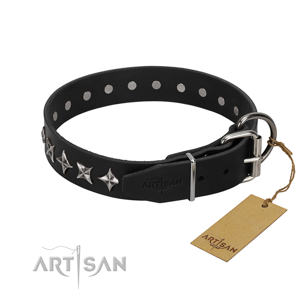 Comfy wearing adorned dog collar of quality full grain natural leather