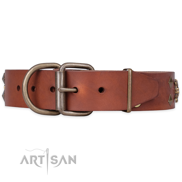 Daily use adorned dog collar of strong full grain leather