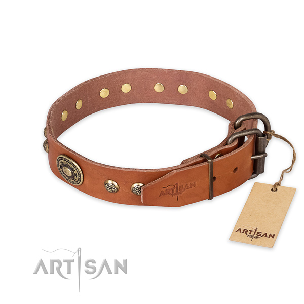 Rust-proof hardware on full grain natural leather collar for daily walking your canine