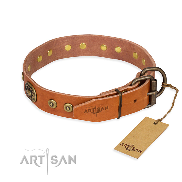 Leather dog collar made of quality material with strong studs