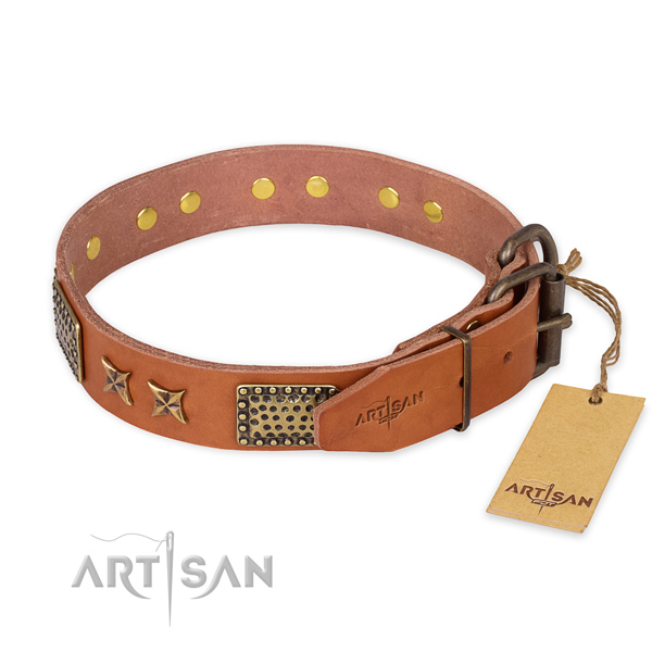 Corrosion proof fittings on full grain genuine leather collar for your impressive canine