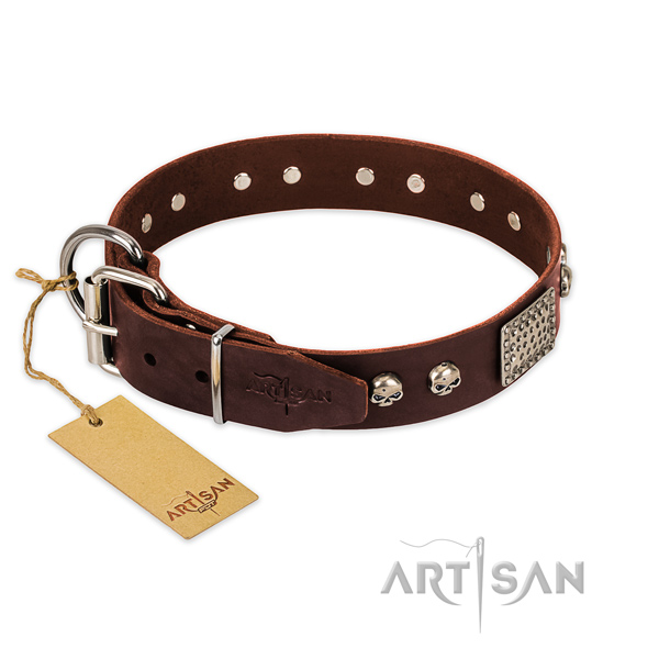 Corrosion proof studs on everyday use dog collar