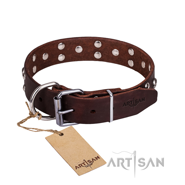 Daily walking dog collar of best quality full grain leather with embellishments