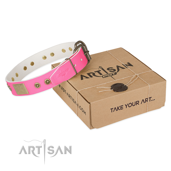 Strong buckle on dog collar for easy wearing