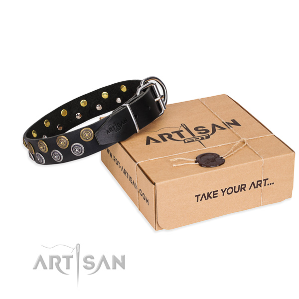 Everyday use dog collar of high quality genuine leather with adornments