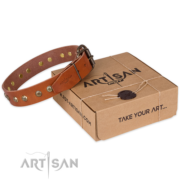 Durable buckle on full grain natural leather collar for your handsome pet