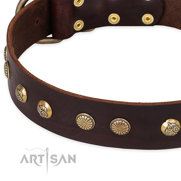 Natural genuine leather collar with rust-proof hardware for your handsome pet