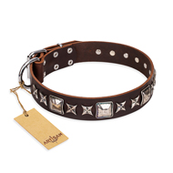 """Perfect Impression"" FDT Artisan Brown Leather German Shepherd Collar with Silvery Square Studs"