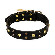 """Heavy Metal"" Leather German Shepherd Collar with Skulls and Studs 1 1/2 inch (40 mm)"