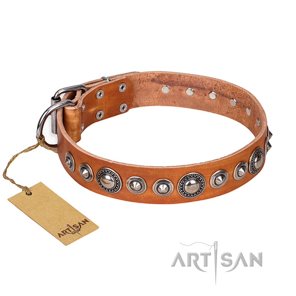 Full grain leather dog collar made of quality material with durable fittings
