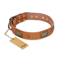 """Cosmic Traveller"" FDT Artisan Adorned Leather German Shepherd Collar with Old Bronze-Plated Stars and Plates"