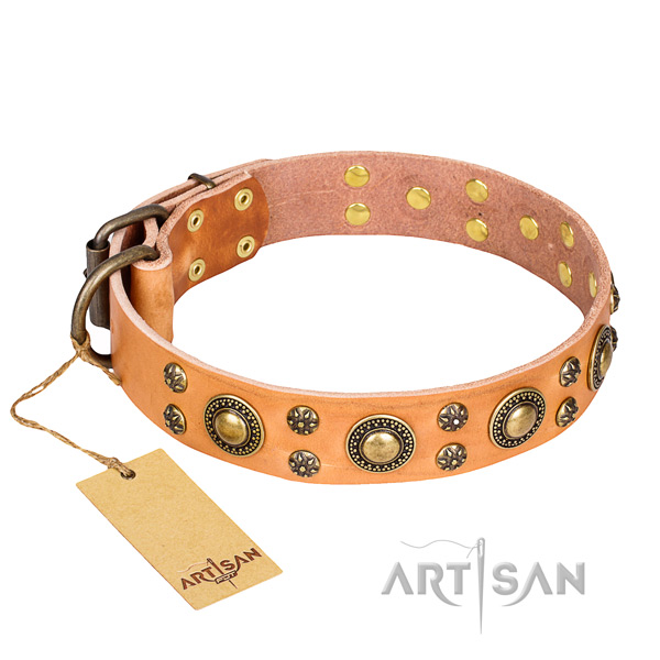 Easy wearing dog collar of top notch leather with embellishments