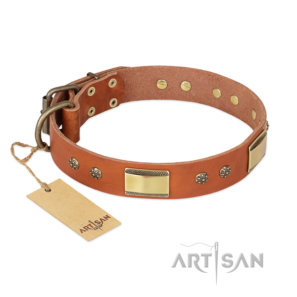 Designer full grain natural leather collar for your four-legged friend
