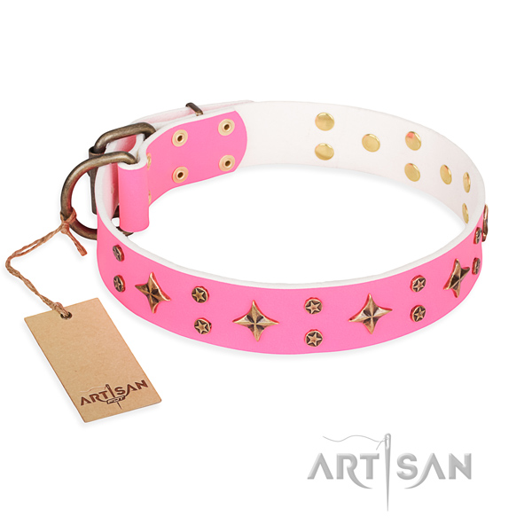 Comfy wearing dog collar of top notch leather with studs