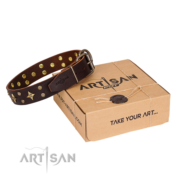 Everyday walking dog collar of fine quality full grain natural leather with embellishments