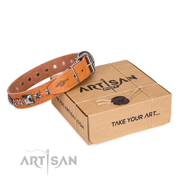 Stylish walking dog collar of top notch full grain leather with decorations