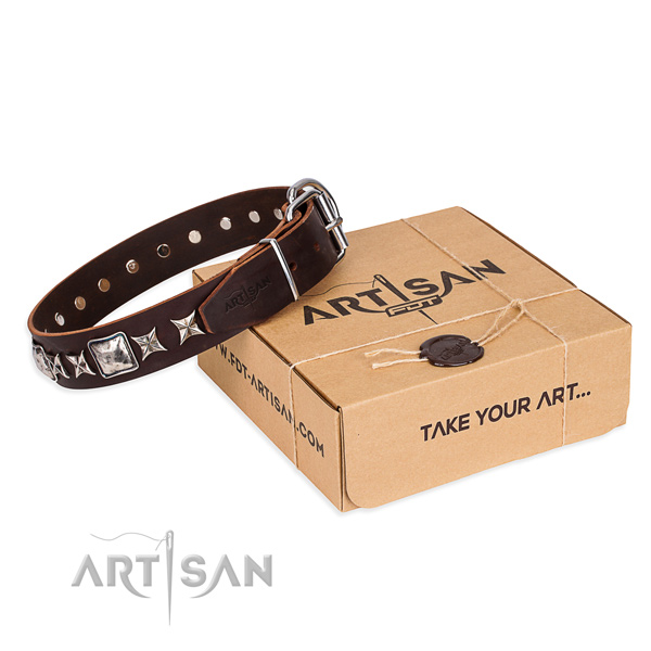 Fancy walking dog collar of best quality full grain leather with adornments