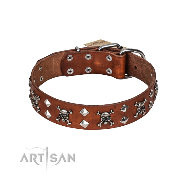 Comfortable wearing dog collar of top quality full grain leather with embellishments