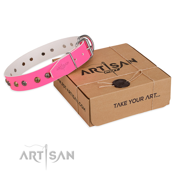 Walking dog collar with Exceptional corrosion resistant decorations