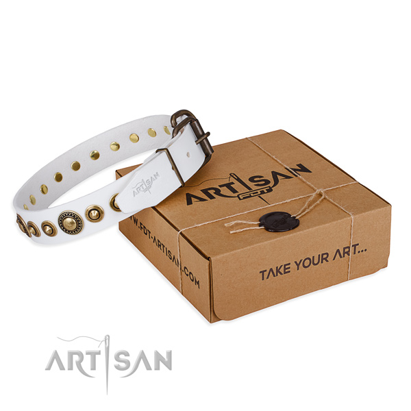 Soft to touch full grain natural leather dog collar created for stylish walking