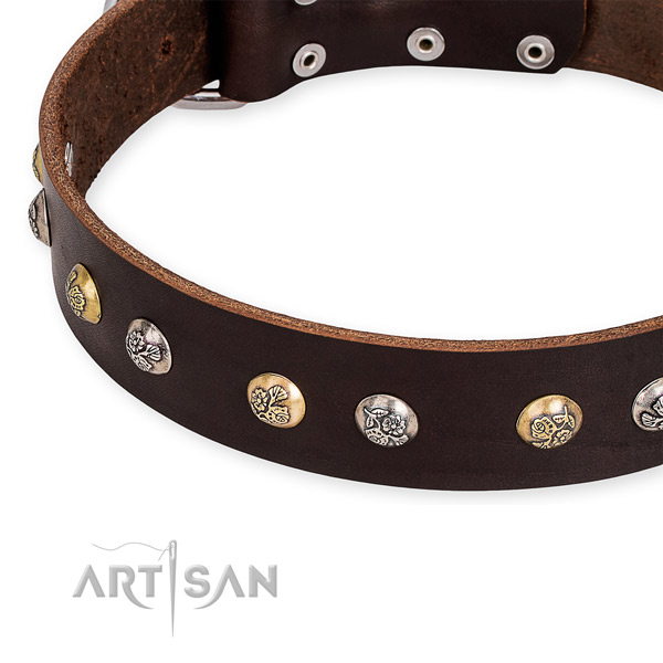 Natural genuine leather dog collar with unusual durable adornments
