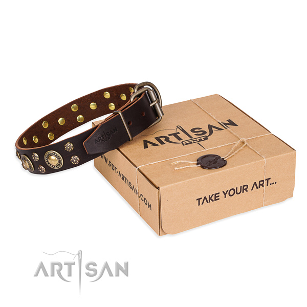 Comfortable wearing dog collar of quality full grain leather with decorations