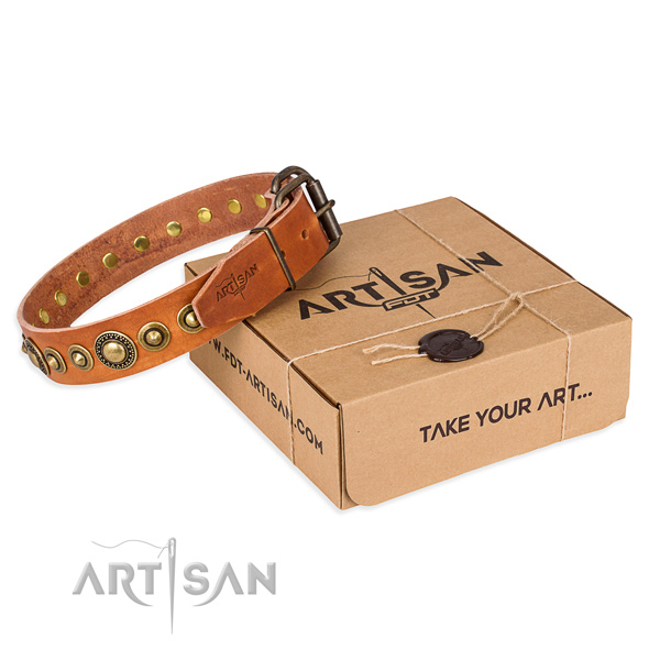 Top rate full grain genuine leather dog collar handcrafted for daily walking