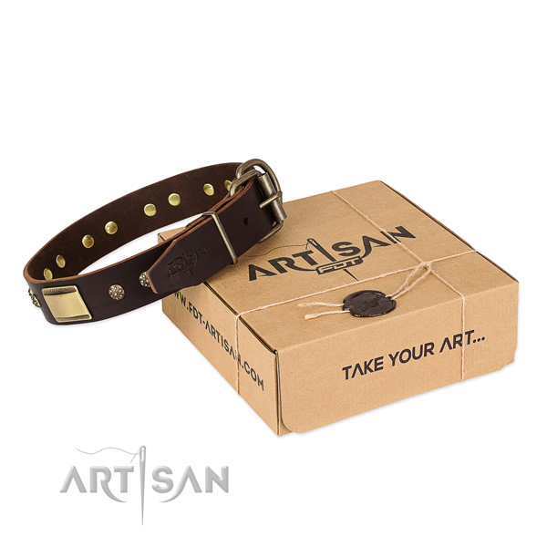 Exquisite full grain leather collar for your lovely doggie