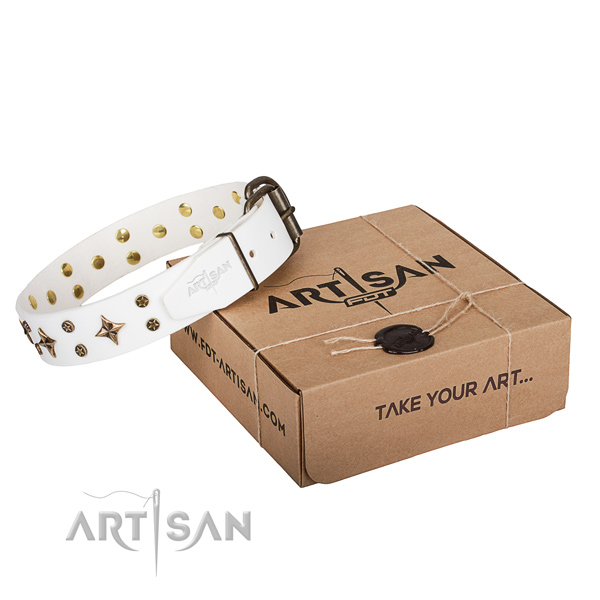 Handy use dog collar of reliable full grain leather with adornments