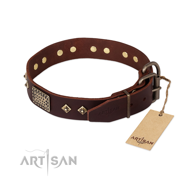 Genuine leather dog collar with durable traditional buckle and embellishments